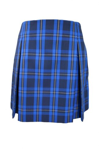 Senior Girls Check Pleated Skirt